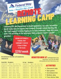 Remote Learning Camp flyer (pdf)